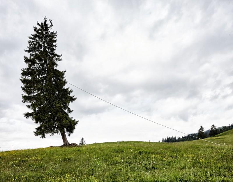 IMA_Georunde-Rindberg_01